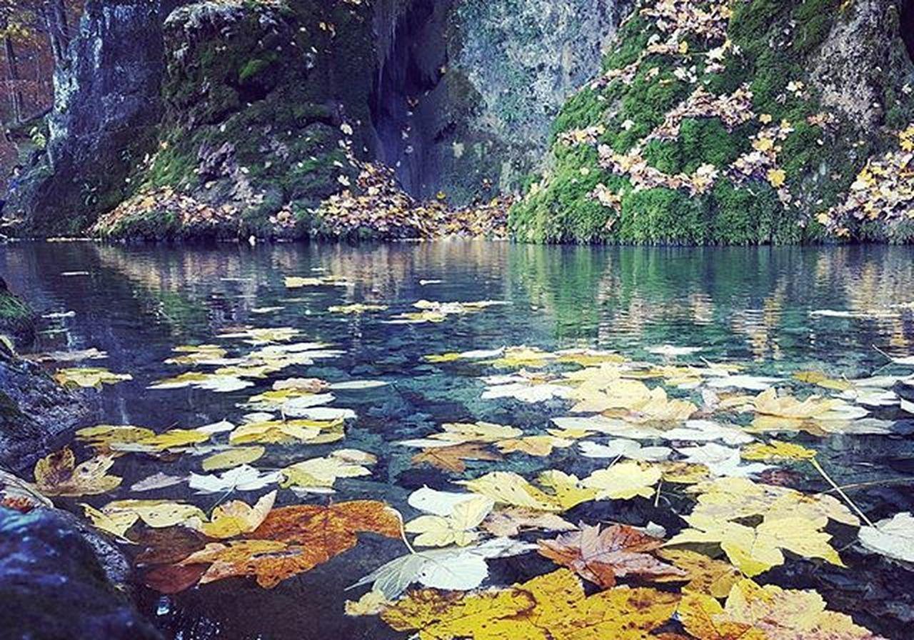 🍁🍁 Autumn Autumnlove Sea Relax Samsungedge Badurach