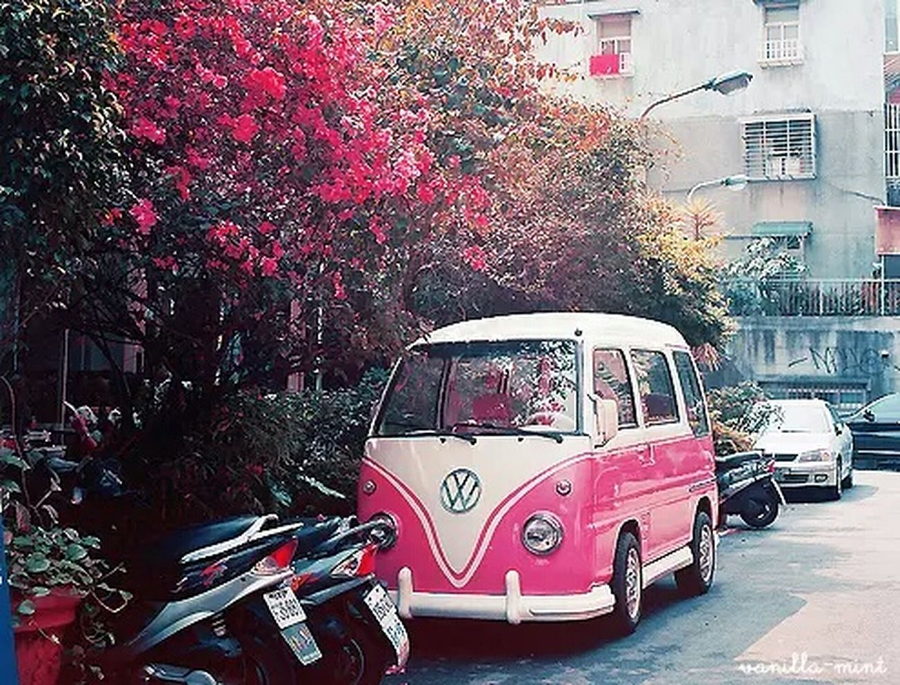 I Want It♡ Volkswagon ⭐👊