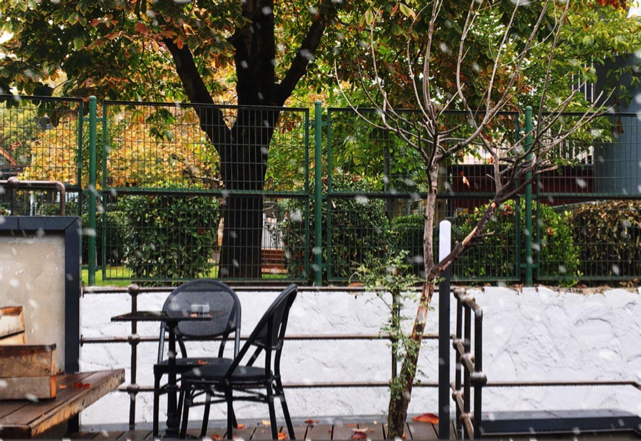Uzaklaşan birileri ve yalnız kalan hayatlar. Şimdi ağaçlar yapraksız yarım kalıyor Tree Table Architecture Restaurant No People Growth Nature Built Structure Building Exterior Day Outdoors