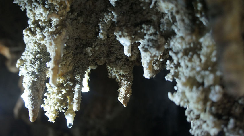 Beauty In Nature Cave Close-up Detail Drop Focus On Foreground Light And Shadow Natural Pattern Nature Outdoors Purity Rock - Object Rock Formation Stalagmite Textured  Time