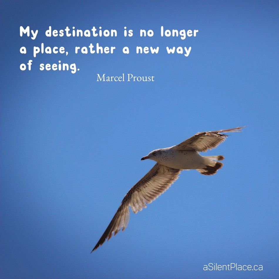 My destination is no longer a place, rather a new way of seeing ~ Marcel Proust