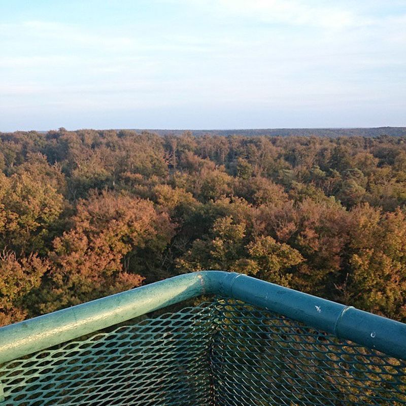 Mirador fontainebleau Forest Fontainebleau Chill