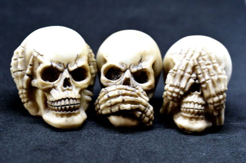 Hear, Speak & See No Evil Human Body Part Bone  Human Skull Close-up Gray Background Take On The Hear No Evil, Speak No Evil & See No Evil Monkeys proverb