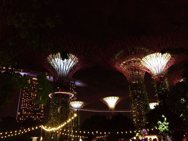Fantasy World EyeEm Best Shots EyeEm City Sky Built Structure Outdoors Architecture Arch Low Angle View Night Illuminated Iphonegraphy VSCO Nightview Cityscape Lights Lights In The Dark Singapore Glow Fantasy