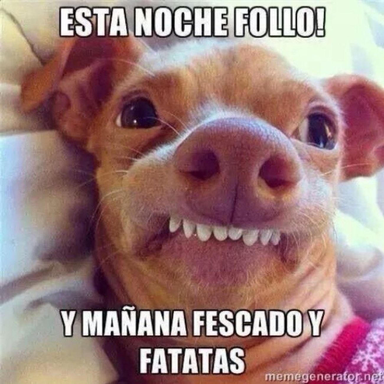 Wuajajajajajajaj XD Follo  Fescado Fatatas ajjajaja