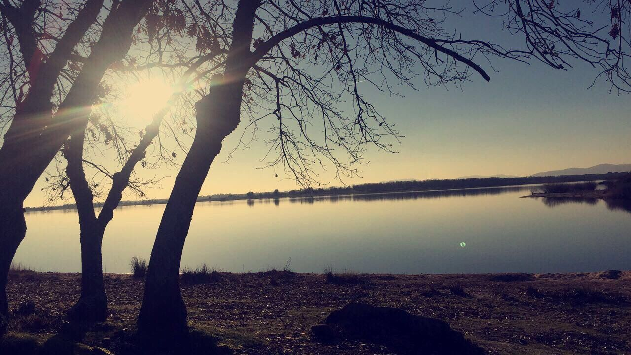 nature, tree, tranquil scene, beauty in nature, tranquility, scenics, lake, sun, water, outdoors, bare tree, landscape, idyllic, sunset, no people, reflection, sky, tree trunk, branch, mountain, day