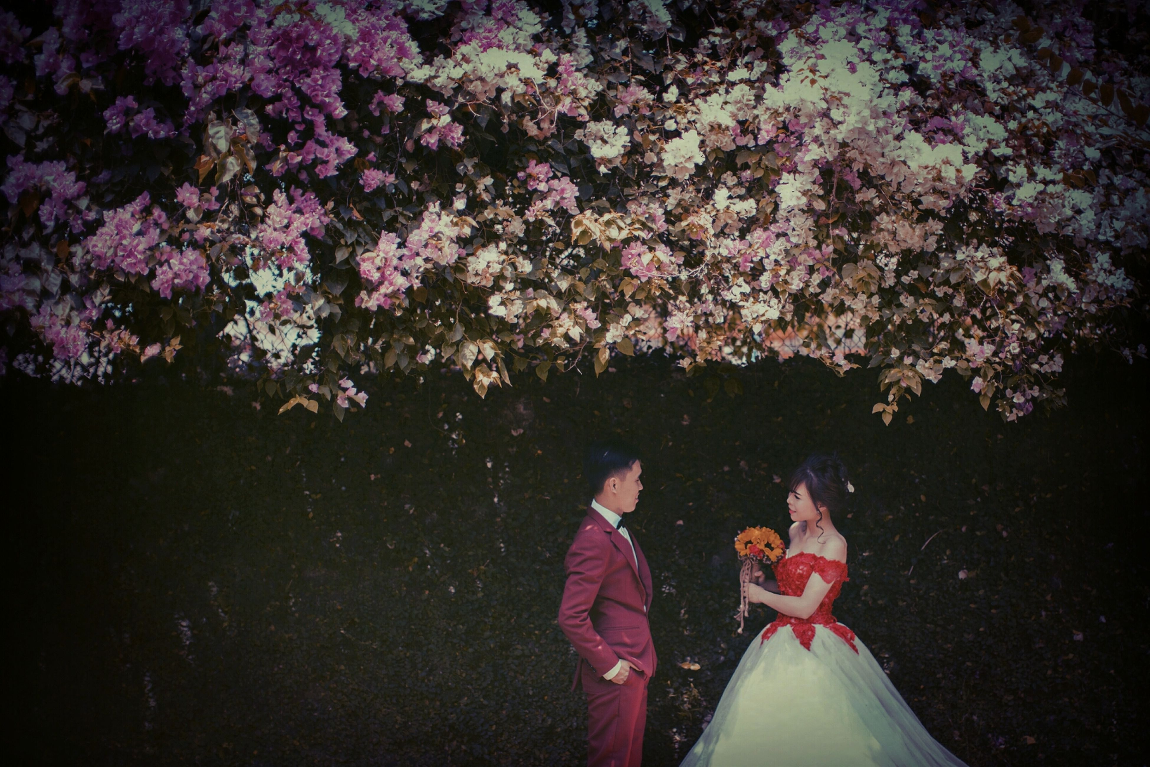 two people, heterosexual couple, togetherness, night, tree, event, men, adults only, people, adult, outdoors, cultures, young women, young adult, sky, wife, nature, star - space, astronomy