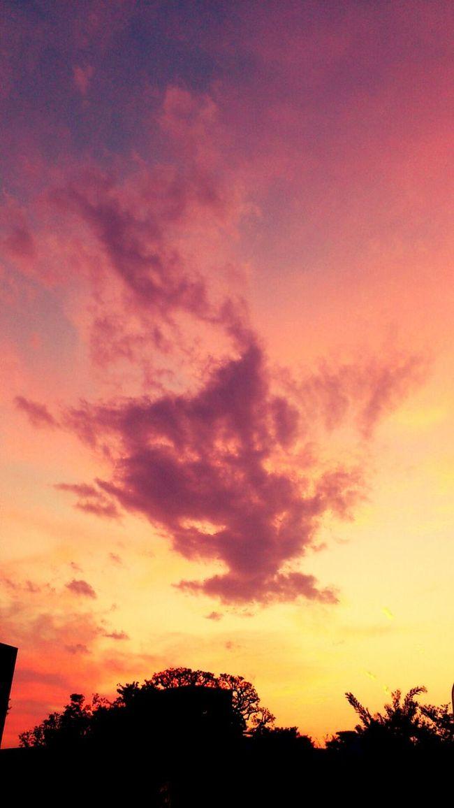 Sunset #sun #clouds #skylovers #sky #nature #beautifulinnature #naturalbeauty #photography #landscape Sunset_collection Sky_collection Nature_collection