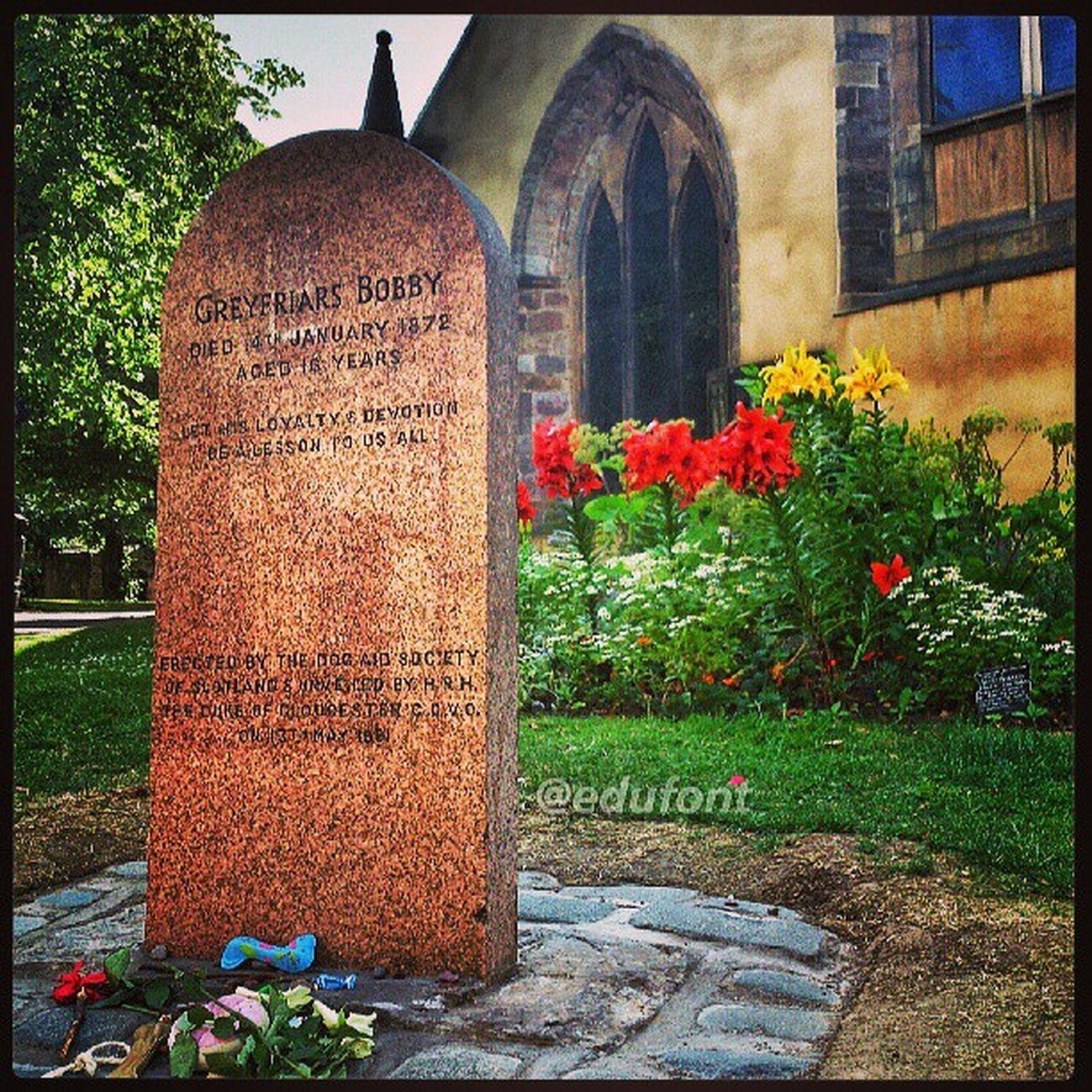 Làpida dedicada a un Gos . En Bobby és va passar 14 anys al costat de la tomba del seu amo, al Cementiri de Greyfriars , a Edinburgh Scotland. Molts pensaments, molts records... tots ells, per l'Anna... gossos dogs dog love