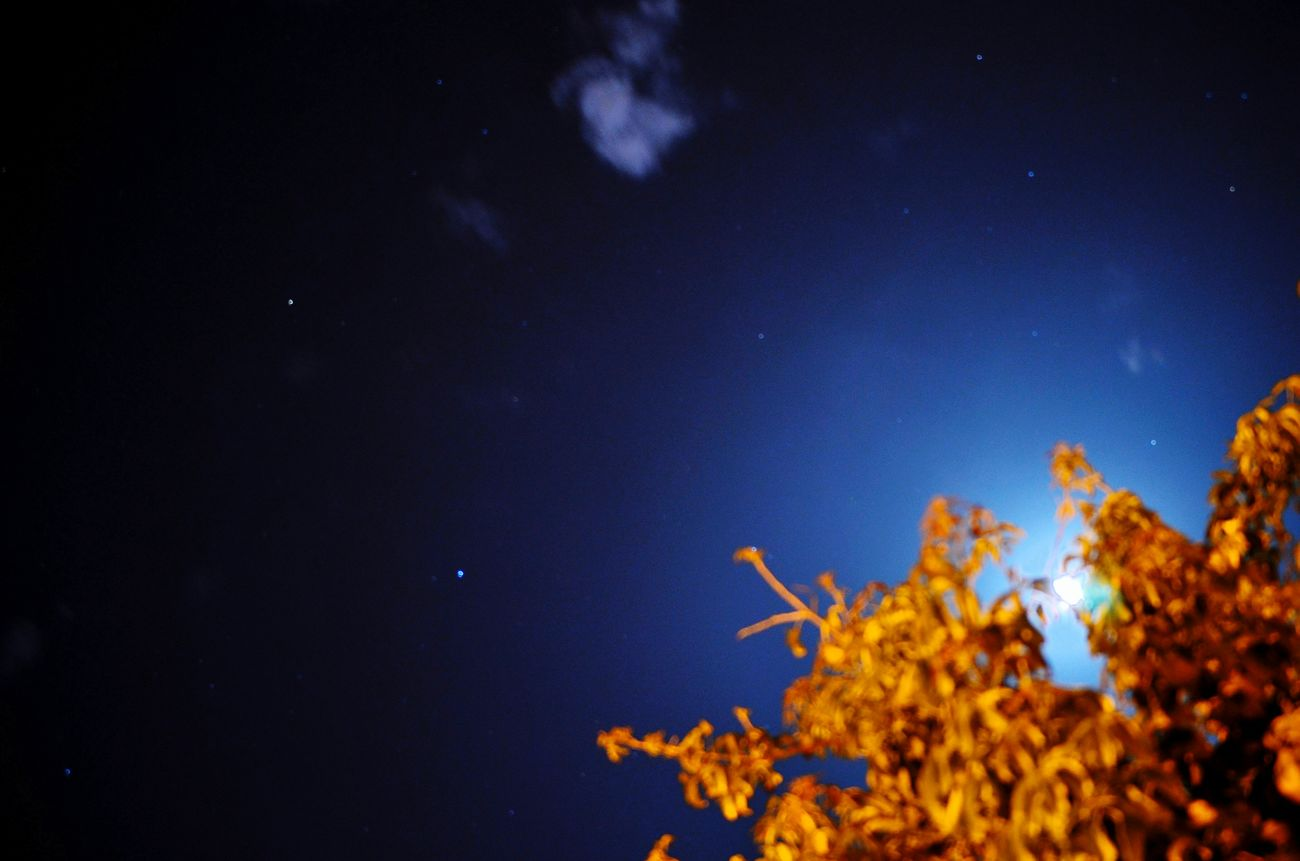 Night Photography Sky Moon And Clouds Moon And Stars Stars Beautiful Nature سبحانك ربي Oujda City, Morocco Blue