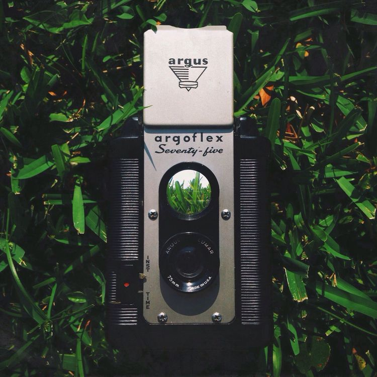Capture. Simplicity Camera Summer Alphabetography Small And Swift Glitch