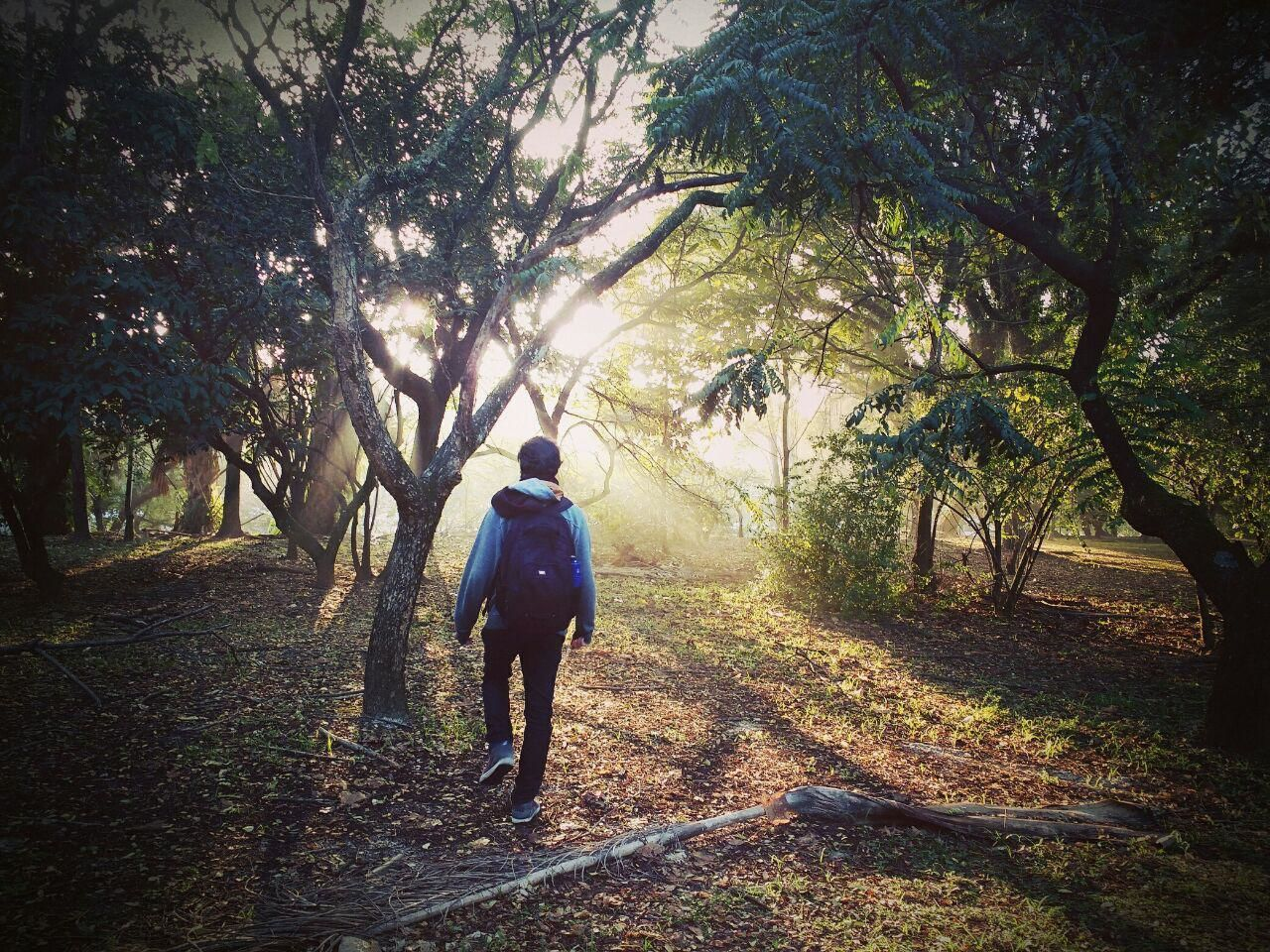 Early morning in the woods Beauty In Nature Casual Clothing Day Diminishing Perspective Dirt Road Full Length Growth Landscape Leisure Activity Lifestyles Nature Non-urban Scene Outdoors Plant Rear View The Way Forward Tranquil Scene Tranquility Tree Vanishing Point The Magic Mission
