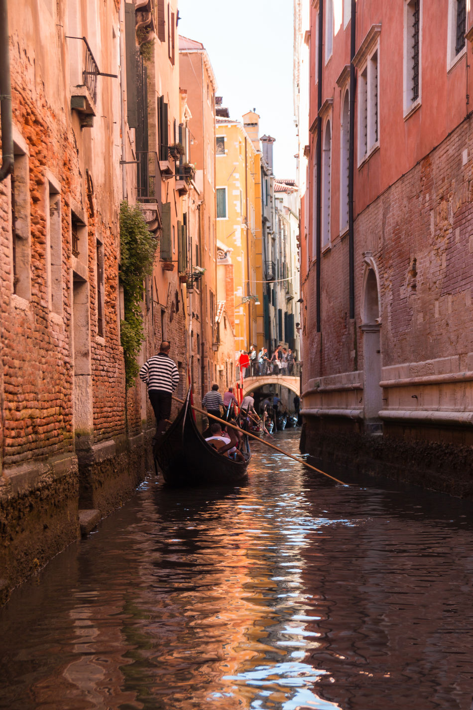 Architecture Building Exterior Built Structure Canal Day Gondola Gondola - Traditional Boat Gondolier Italy Men Mode Of Transport Nautical Vessel Outdoors People Real People Transportation Travel Destinations Venice, Italy Water Waterfront
