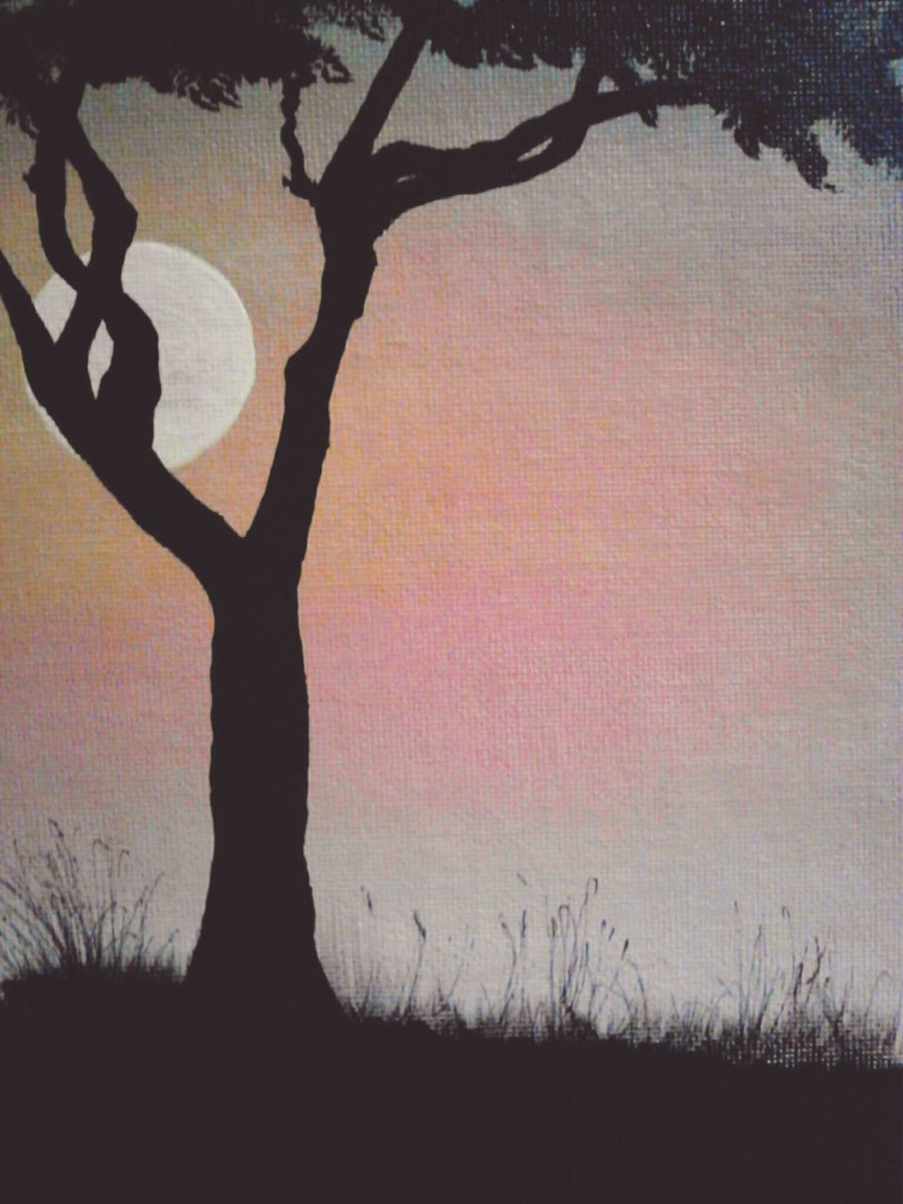 Silhouette Tree Sunset Outdoors Sky ThroughMyLens Capture The Moment EyeEm Gallery EyeEm Best Shots Personal Perspective EyeEm ArtWork Myartwork Canvas Painting Paint Beauty In Nature No People Indoors  Realism Close-up Sunlight Nature