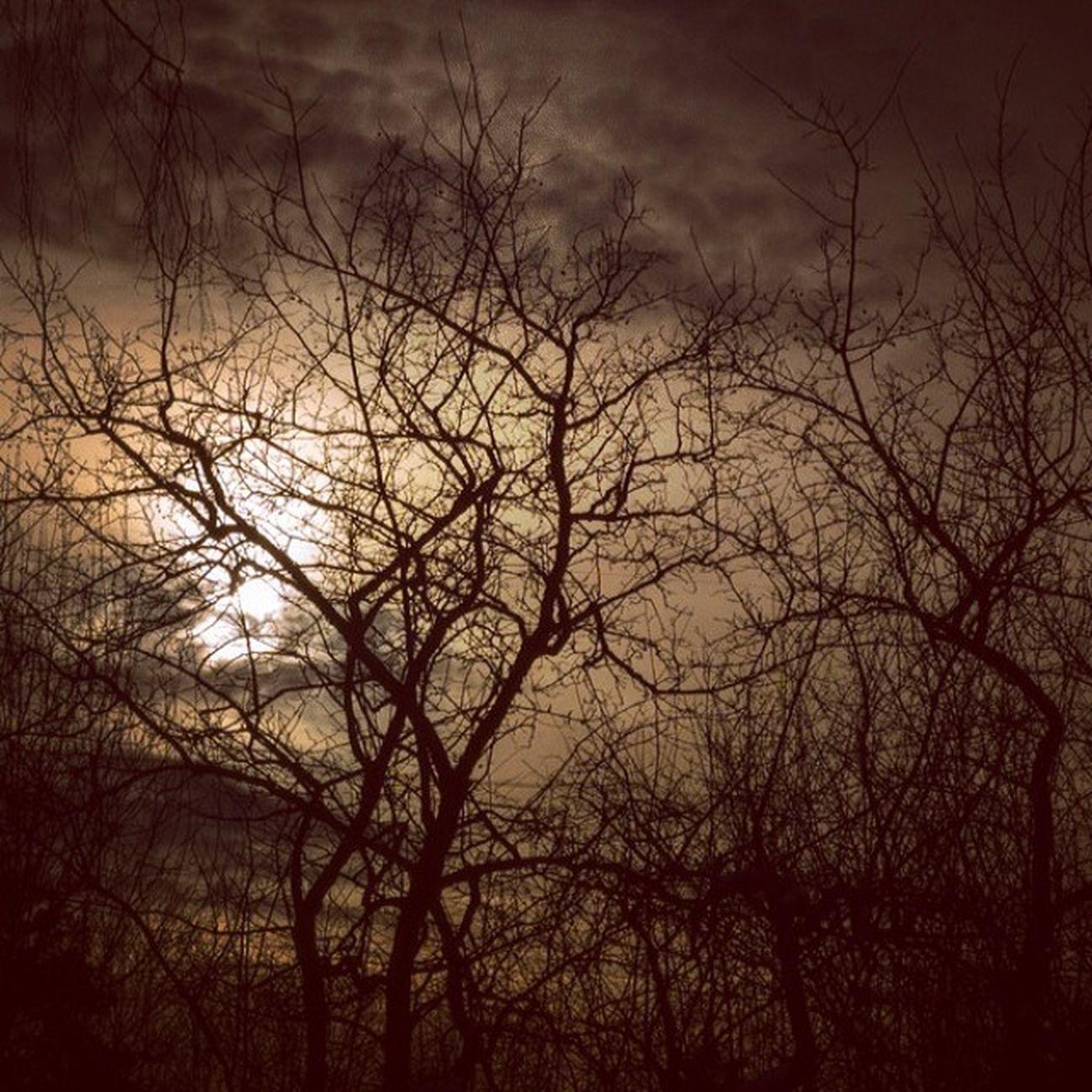 Karanlik bir saat basliyor ansizin, sensiz, sessiz... Yalnizlik yine ayni, yine isimsiz ve yine ben gibi... Pofffffff Kendimenot Fotograf dark darkness sunset gunbatimi manzara nature istanbul gokyuzu sky