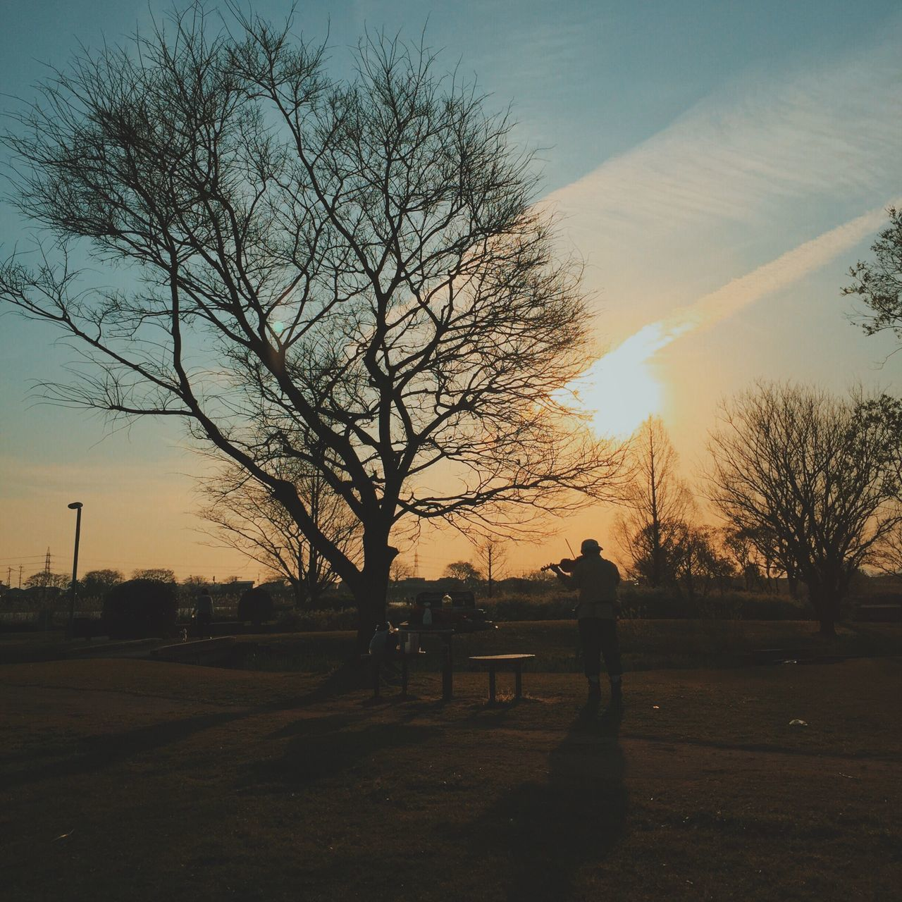 Sunset Sky Nature Tree Outdoors Silhouette Beauty In Nature Real People VSCO Eyem Best Shots Mobilephotography