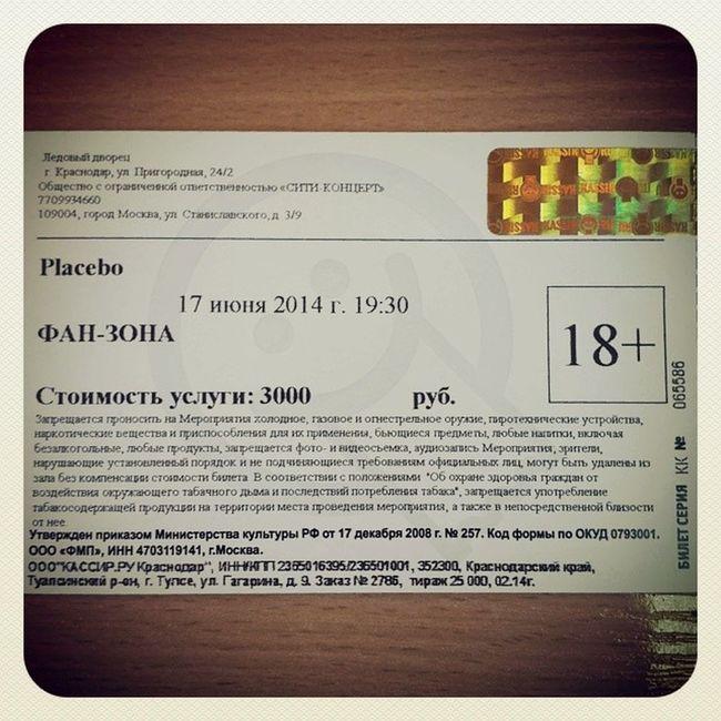 Тадааам! Placebo Concert Molko