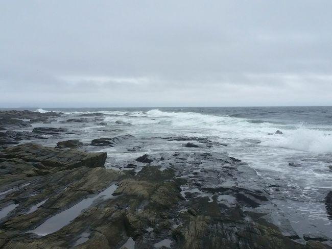 Monochromatic Portraiture Grey Day Rocky Landscape Rough Sea Rough Texture Rocky Coastline Portland Maine