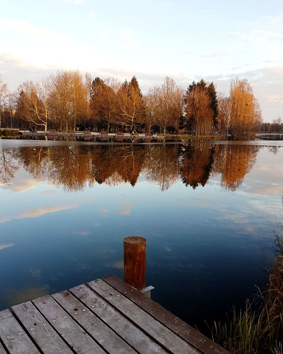 Lake Water Reflection Sky Nature Wood - Material No People Autumn Cloud - Sky Tree Beauty In Nature Szombathely Scenics Landscape Outdoors Tranquility Day