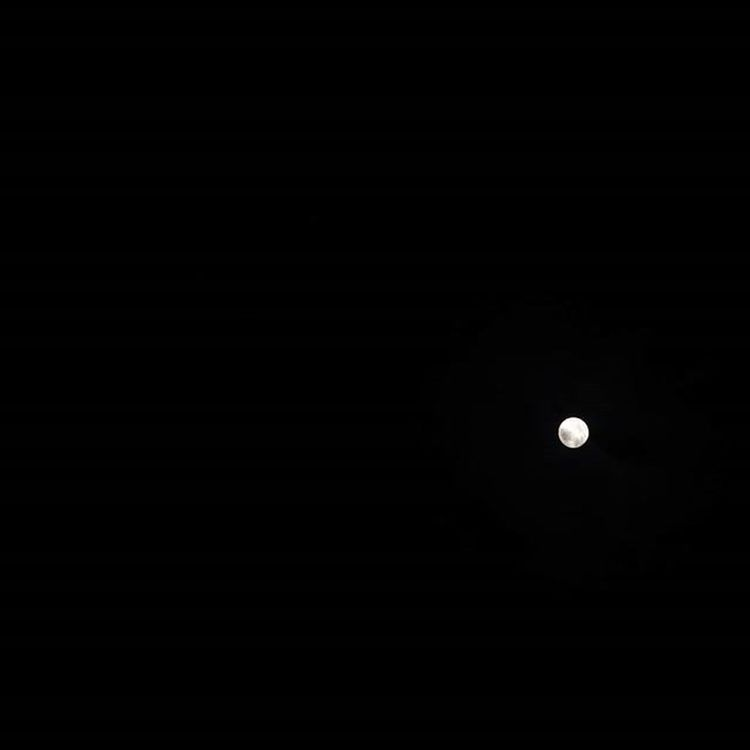 It should be big Supermoon but some how its very small ;P スーパームーン ちっちゃくなっちゃった🐰
