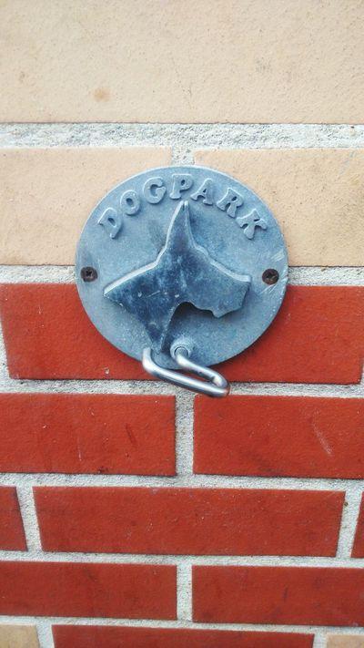 Dogcatch Dog Montrouge Brique