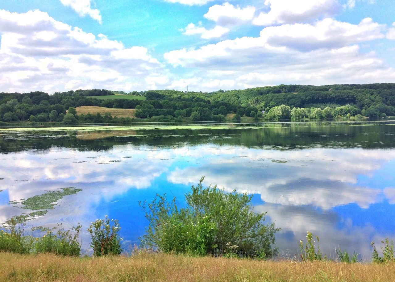Reflection of the clouds in lake ☁️ Cloud - Sky Sky Water Lake Tree Nature Kemnader See  Scenics Witten Reflection Outdoors Tranquil Scene Day No People Landscape Blue Growth Mountain Summer Germany Travel Destinations Reflection Reflection_collection Mirror Lake View