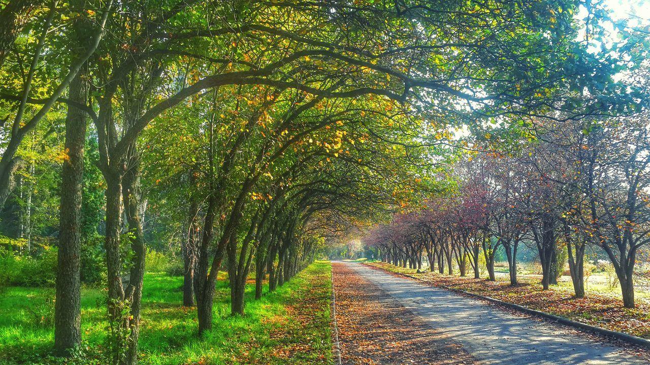 AlmatyMyFirstLove Almaty City Almaty Kazakhstan Botanical Garden Weekend Fine Art Photography Colour Of Life