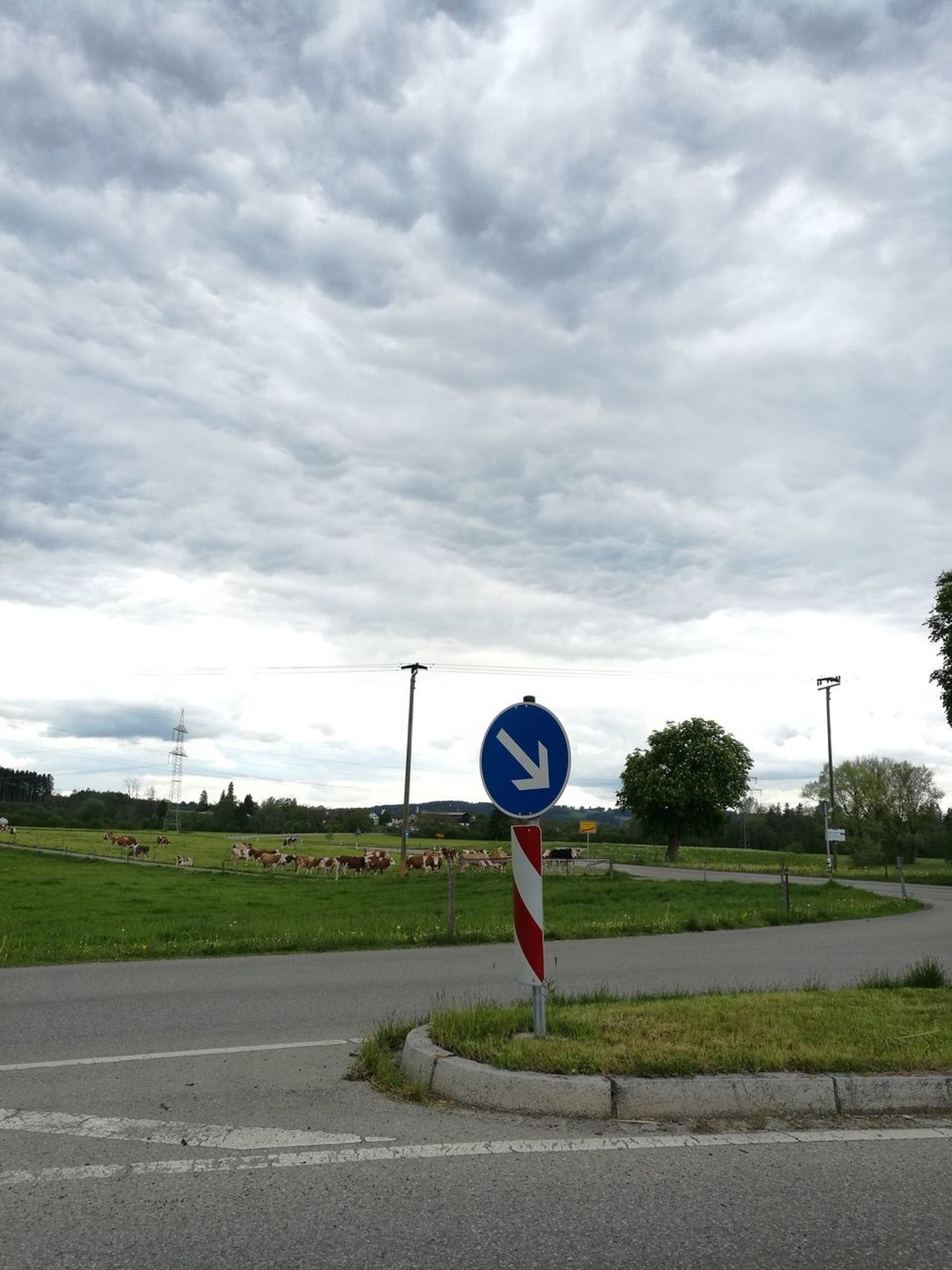 Cloud - Sky Communication Day Grass Nature No People Outdoors Road Road Sign Sky Speed Limit Sign Transportation Tree