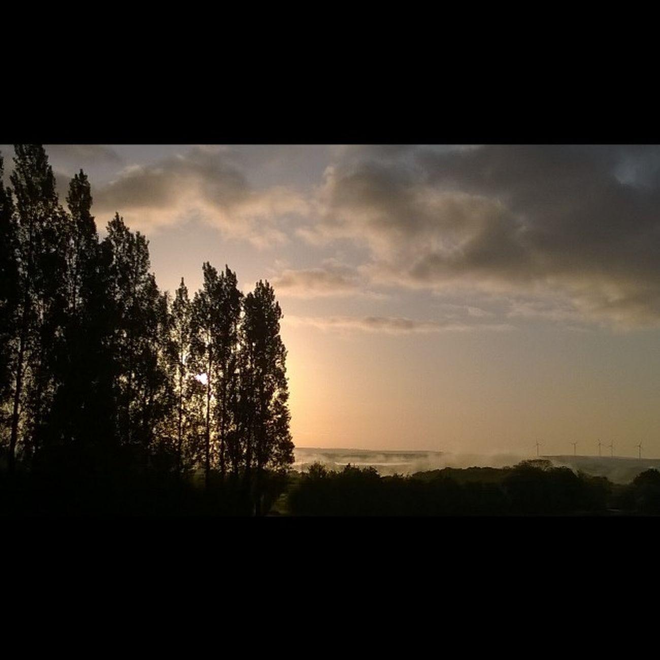 Leverdesoleil avec Brouillard et Nuages Sunrise with Fog and Clouds Sun Soleil Countryside Campagne Taupont Morbihan Miamorbihan Bretagne Breizh Jaimelabretagne Bretagnetourisme Nature Naturelovers Nofilter Instagram Instagramers Trees Arbres Arboles alberi sol sole amanecer