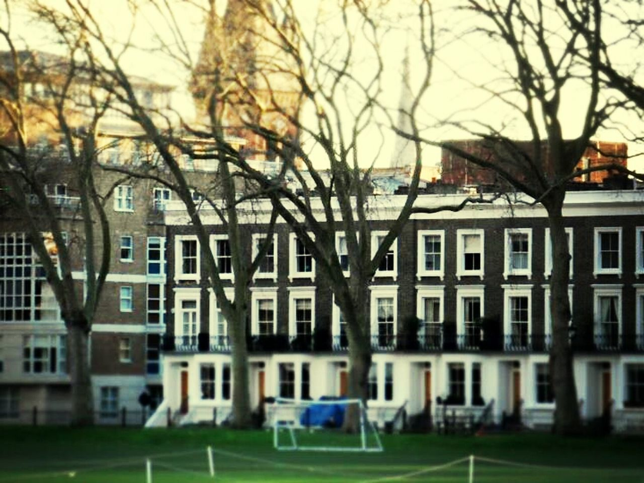 building exterior, architecture, bare tree, built structure, tree, house, residential building, no people, day, outdoors, grass, branch, city, sport, nature, sky