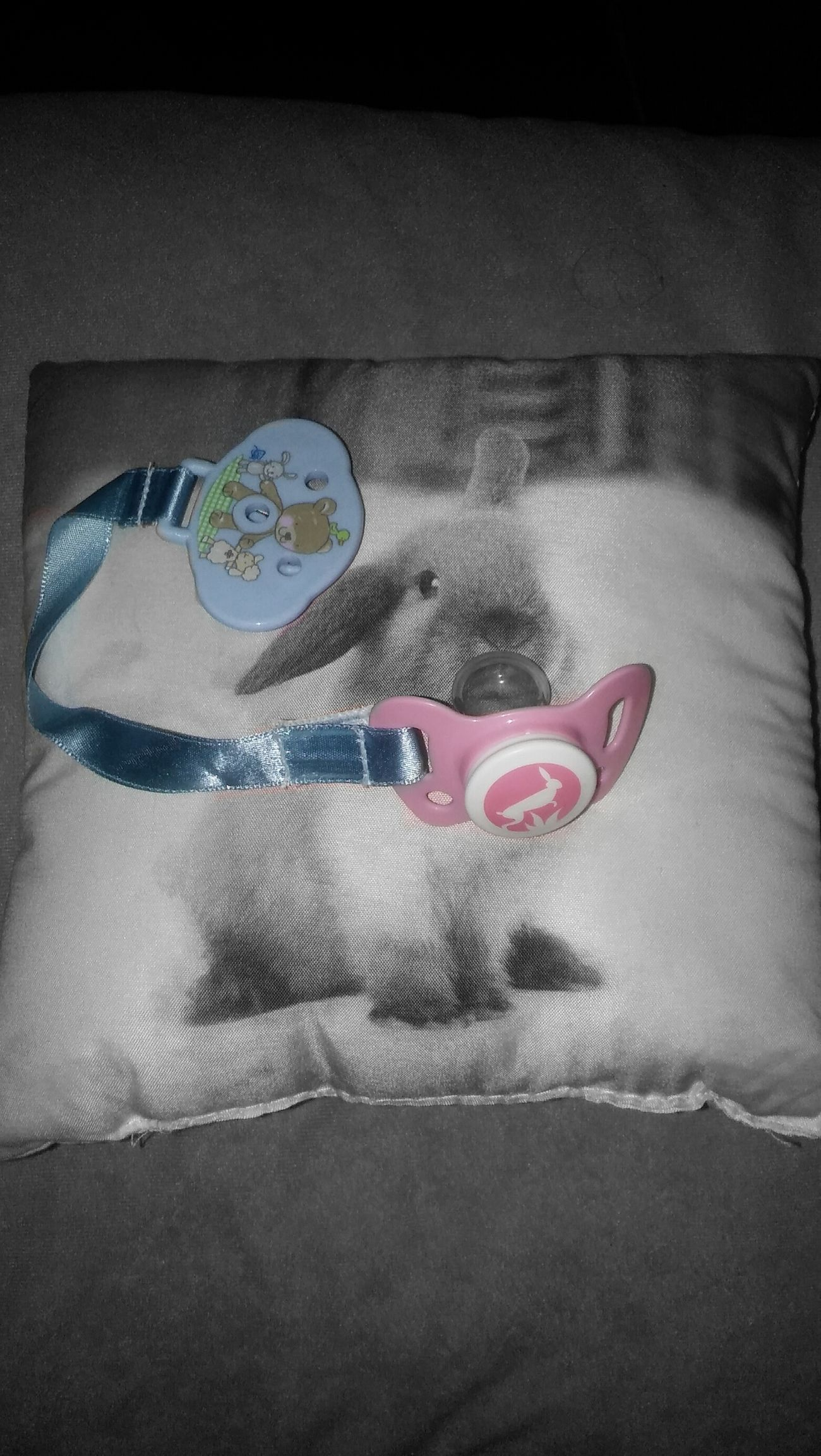 Babyblue Babypink Bunny  Pacifier Ddlg Pillow Littlespace Daddykink Daddydom Adultplay Pastel No People First Eyeem Photo