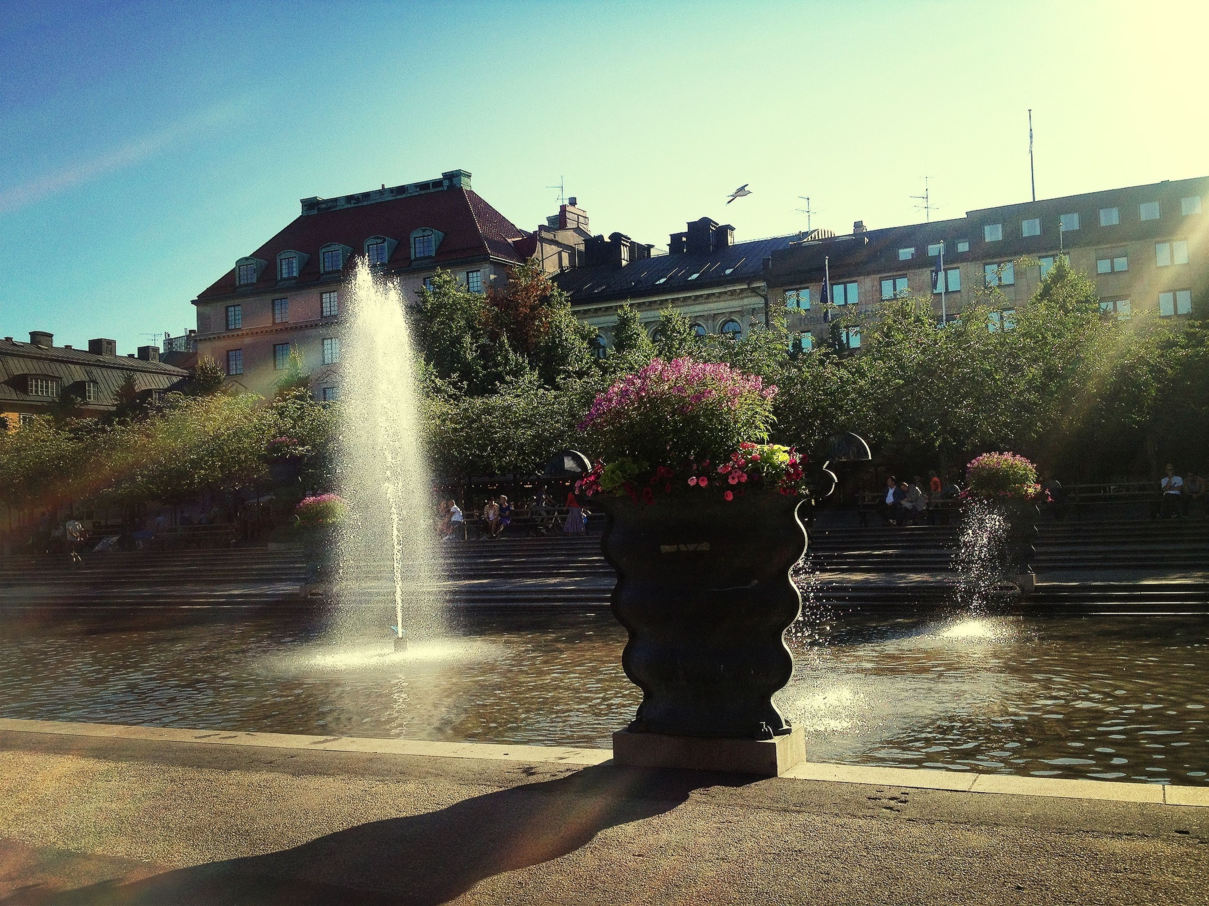 water, building exterior, fountain, architecture, built structure, flower, splashing, motion, spraying, sunlight, sky, day, outdoors, plant, fragility, park - man made space, freshness, formal garden, nature, city