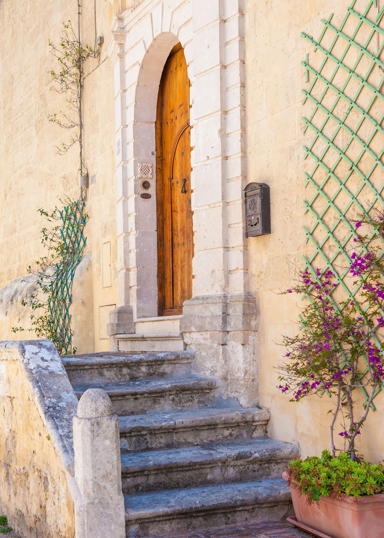 Walking in Matera Arches Architecture Creepers Doors DoorsAndWindowsProject Entrance Green Color Italy Matera Nature No People Outdoors Plant Postbox Potted Plans Steps And Staircases Wall - Building Feature