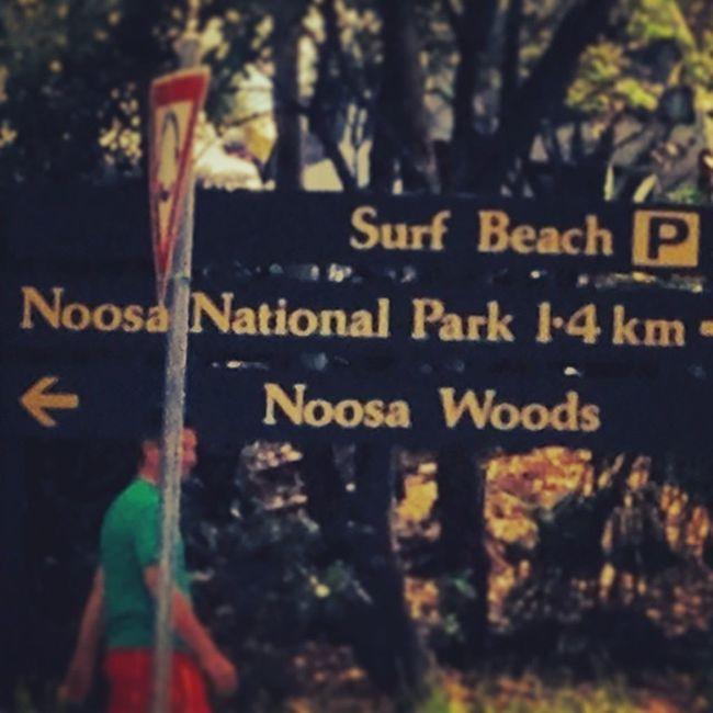 Noosa beach day.... Bit windy though