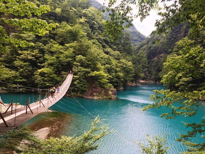 寸又峡 夢の吊り橋 Yumeno Tsuribashi