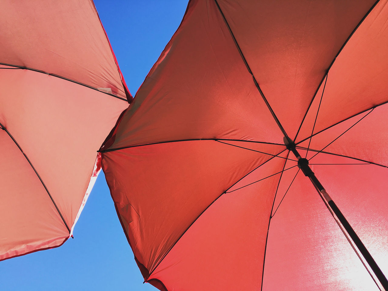 Low Angle View Of Two Parasols Back Lit Beach Umbrella Blue Blue Sky Clear Sky Close-up Color Image Day Directly Below Full Frame Horizontal Low Angle View No People Outdoors Parasol Photography Protection Red Shelter Sky Summer Sunshade Two Objects