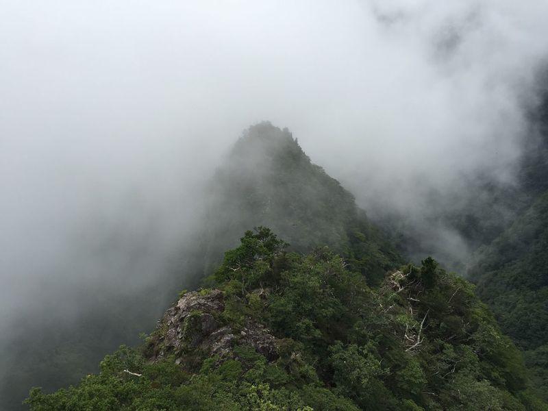 Nature Rocks Mountains Mystic Highlands 大台ケ原 大蛇嵓 EyeEm Nature Lover