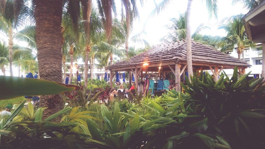 Florida Keys Island Resort hawks cay