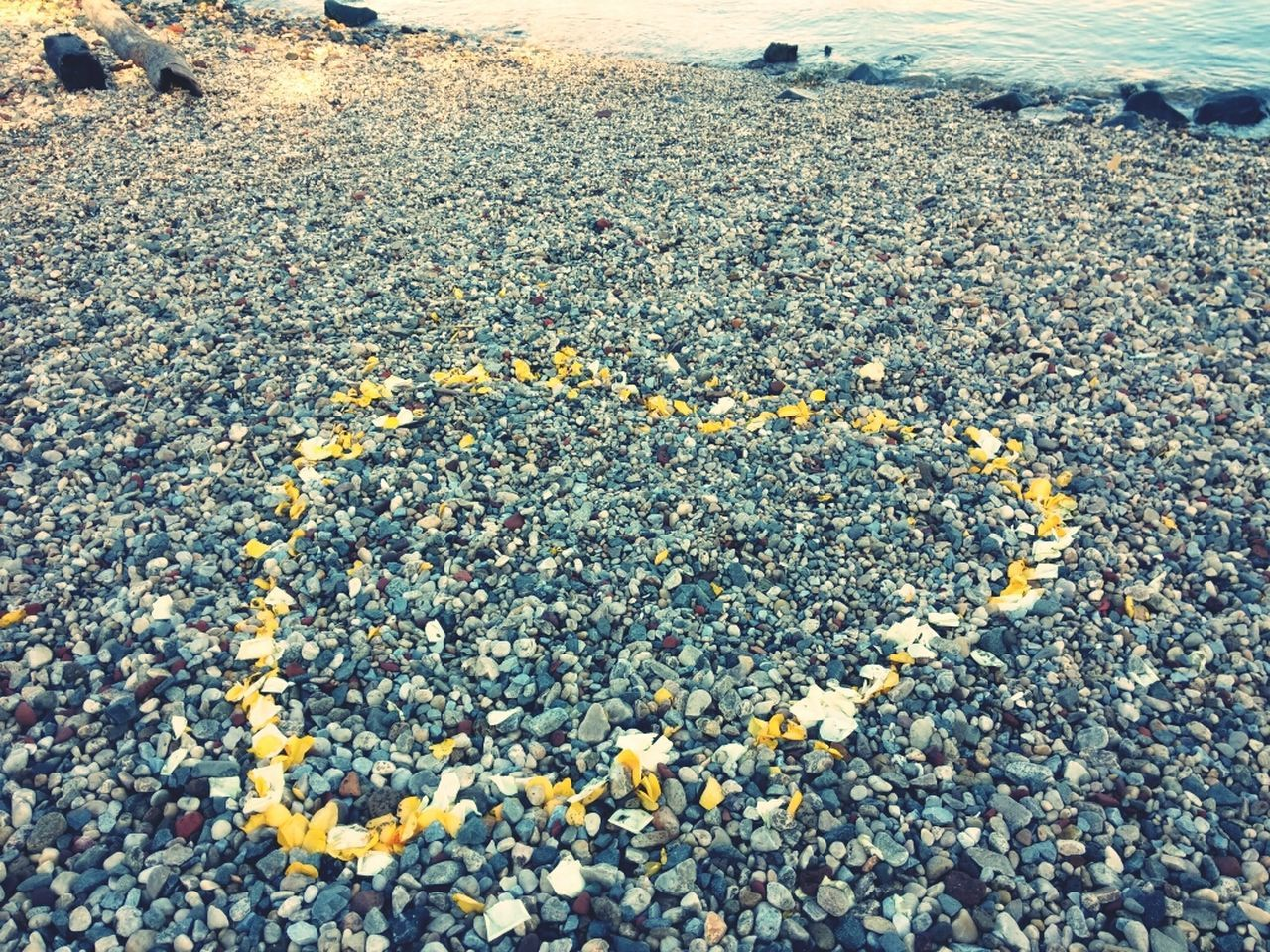 Heart shaped petals on sea shore