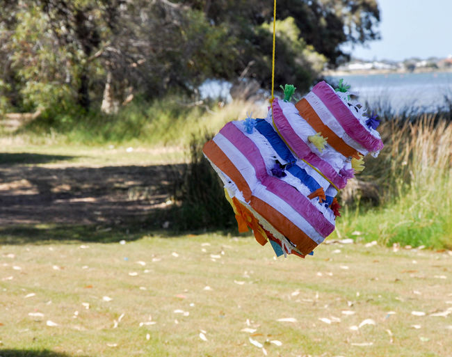 Striped colourful cake-shaped piñata hanging from tree in outdoor nature setting in Mandurah, Western Australia Activity Birthday Birthday Party Candy Time Celebration Celebration Event Childhood Memories Colorful Day Event Focus On Foreground Fun Game Grass Hanging Multi Colored Nature Outdoors Party Party Games Party Time Piñata Selective Focus Striped Pattern Vibrant