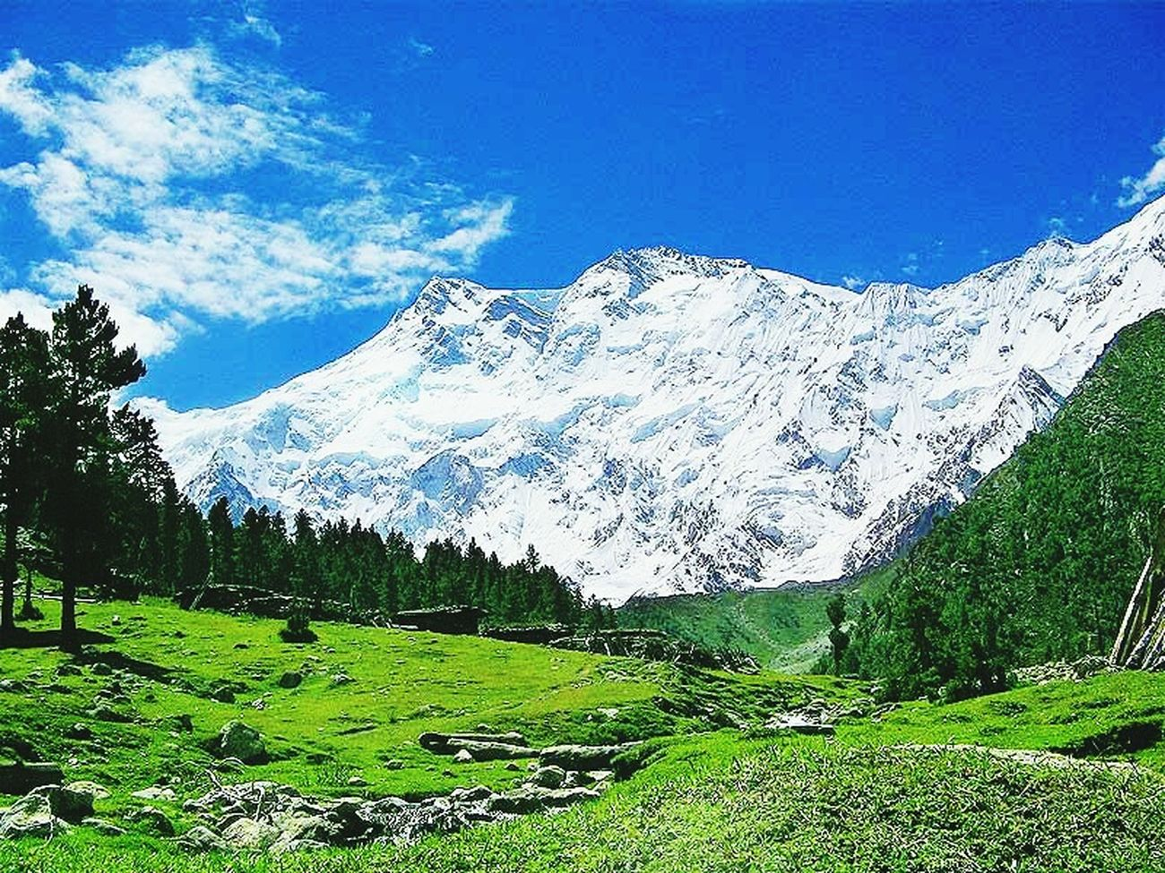 Fairy meadows, Nanga Parbat (Killer mountain) base camp! Picture is not mine but felt like sharing it! Nature Photo Of The Day Pakistani Traveller OpenEdit Pakistan Open Edit GB Capture The Moment First Eyeem Photo Nature Photography Beauty In Nature Vscocam Snowcapped Mountain Gilgit-Baltistan Getting Inspired Hello World Mountain Travel Destinations Karakoram Beauty In Nature, Nature's Diversities Landscape Trees Popular VSCO