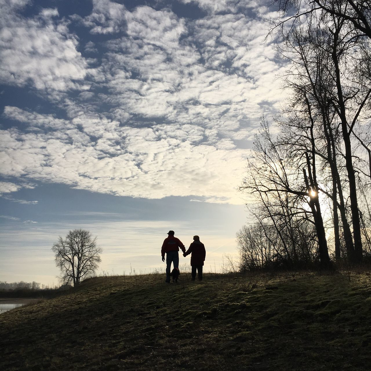 real people, togetherness, two people, walking, men, silhouette, full length, nature, sky, rear view, cloud - sky, lifestyles, beauty in nature, outdoors, tree, bare tree, women, friendship, day, people