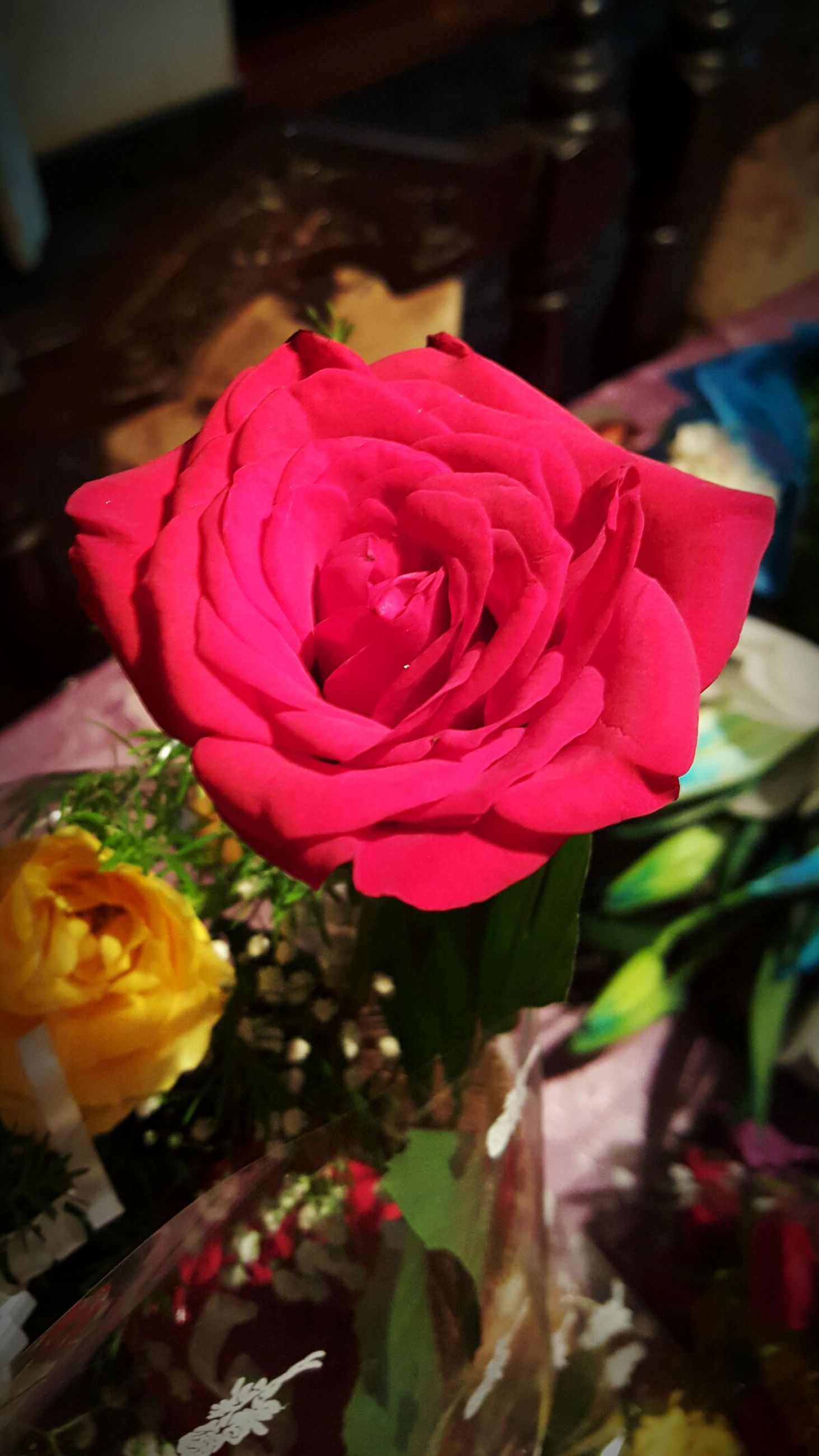 flower, rose - flower, freshness, indoors, petal, close-up, focus on foreground, flower head, fragility, pink color, table, beauty in nature, rose, still life, vase, no people, nature, selective focus, decoration, day