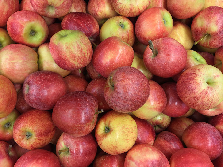Apple Food Freshness Fruit Health Healthy Eating Healthy Lifestyle Market Red Vitamin
