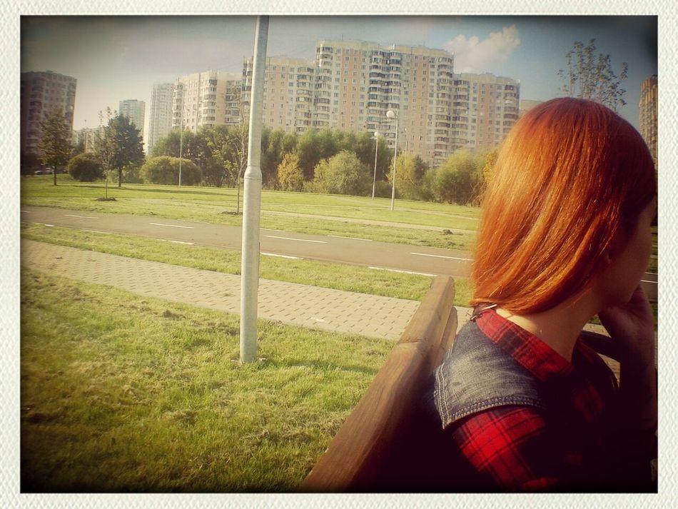 Park Friend Ginger September