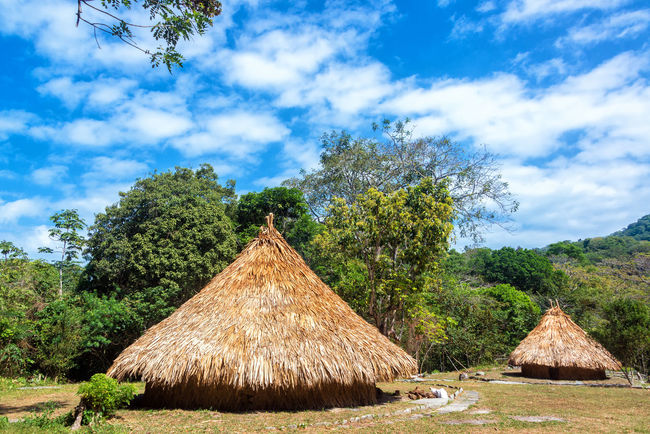 Indigenous huts in Tayrona National Park in a tiny village populated by Kogui Indians Ancient Archaeology Background Bamboo Beach Cabin Calm Caribbean Coast Colombia Forest Green Hot House Hut Idyllic Indians  Kogi National Park Outdoor Park Shelter Tayrona Tropic Village