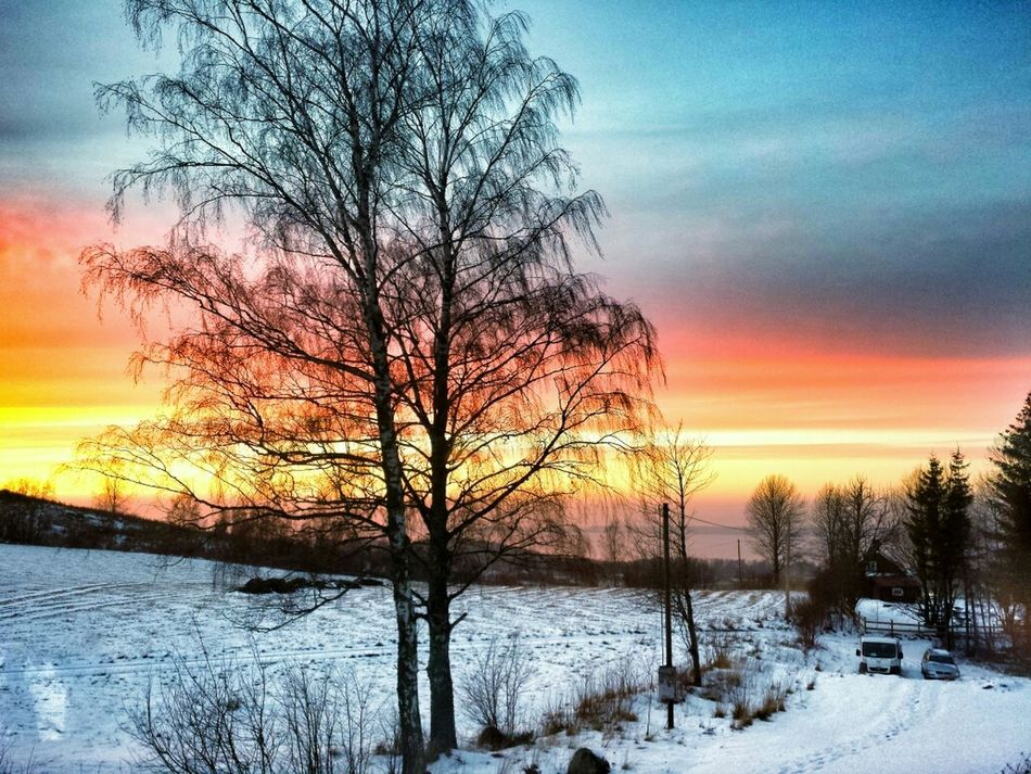 Sunset Coold Winter Sweden Taken from my bedroom window 14-02-02