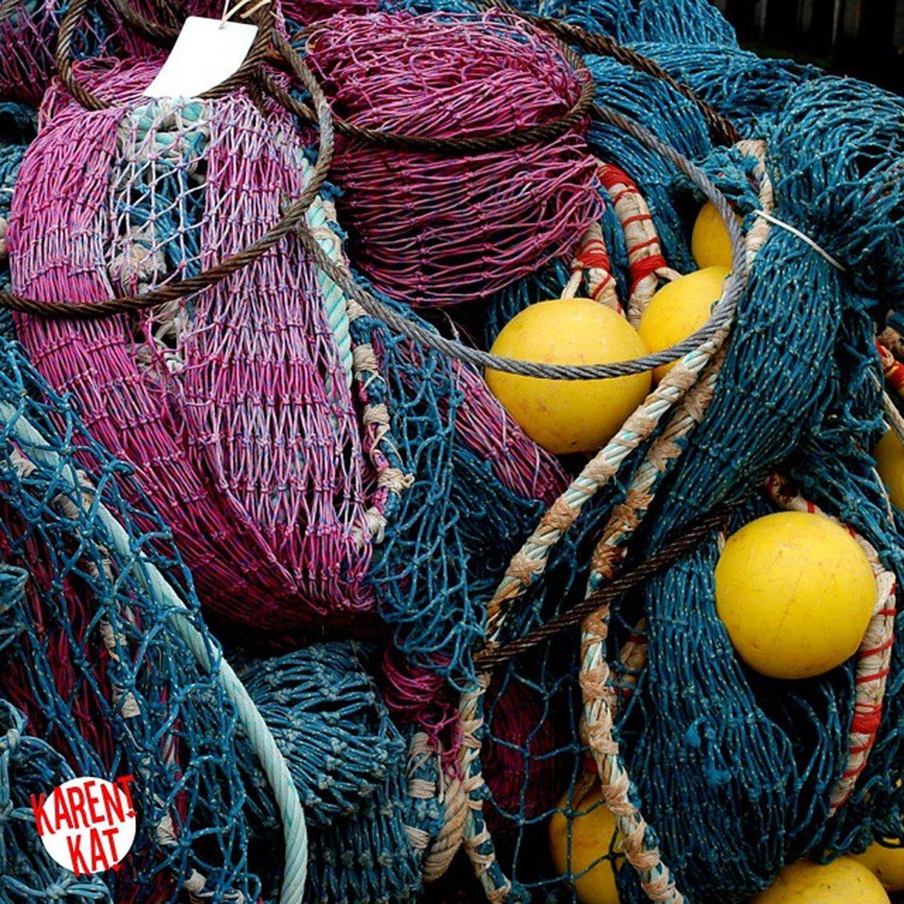 Pris dans les Filets Peche Filets Chalutier port chalut Bretagne BZH bretagnetourisme Finistère