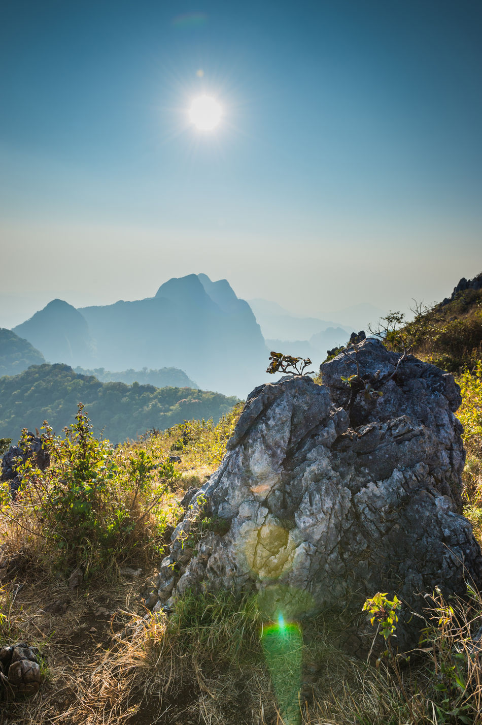 Beauty In Nature Day Doi Luang, Chiang Dao Forest Grass Landscape Lush - Description Mountain Mountain Range Nature No People Outdoors Sky Sun Travel Travel Destinations Tree