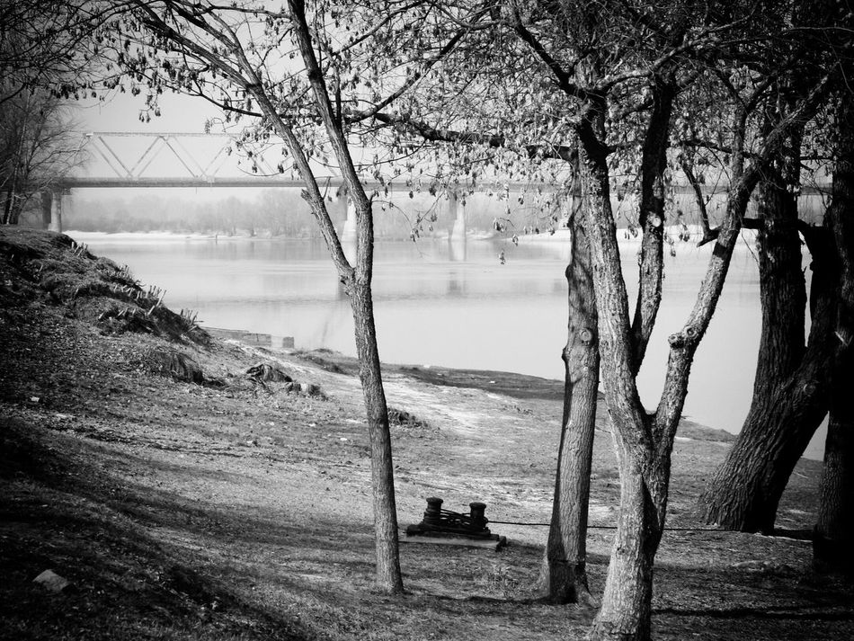 Relaxing Taking Photos EyeEm Best Shots - Black + White Eyeem Monochrome Nature Mazyr Black And White Shades Of Grey Monochrome Our Best Pics